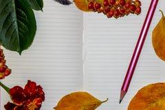 Ett vitt ark av en anteckningsbok, höstguling och gräsplansidor, bär av enros, en blyertspenna Arkivfoton