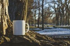 Ett vitt kaffe rånar på parkerar träd royaltyfri foto
