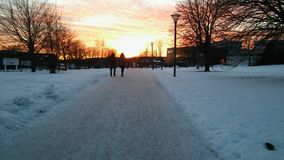 Ett winterday I Sverige Royaltyfria Foton