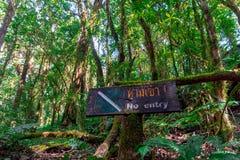 Etttillträde tecken på ett träd i mitt av en nationalpark arkivfoton