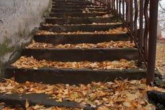 Etude осени с лестницей старого дома Стоковая Фотография RF