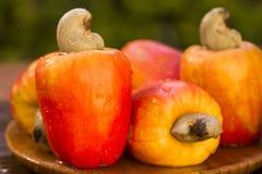 Etwas Acajoubaumfrucht über einer Holzoberfläche Stockfotografie