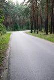 Etwas beleuchtete Straße im Wald Stockbild