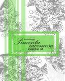 Etykietka dla istotnego oleju pimenta racemosa Zdjęcia Stock