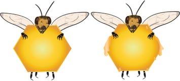 Etykietka, honecomb, honeybee, pszczoła, insekt, cukierki, lato karmowy, zdrowy, obraz stock