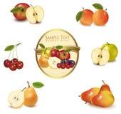 etykietka różni owocowi złociści rodzaje Zdjęcie Royalty Free
