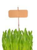 Etykietka w trawie Zdjęcie Stock