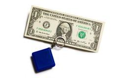 Etykietka z dolarami Zdjęcie Stock
