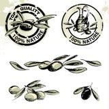 etykietki oliwią oliwne oliwki Obraz Stock