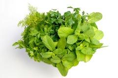 Eu amo ervas frescas Imagem de Stock Royalty Free