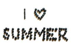 Eu amo a frase do verão feita fora dos mirtilos imagens de stock royalty free