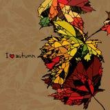 Eu amo o outono Foto de Stock Royalty Free