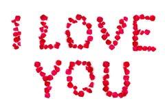 Eu amo a palavra das pétalas cor-de-rosa Foto de Stock Royalty Free
