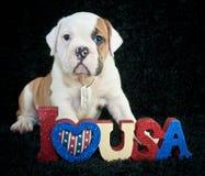Eu amo U S A Fotografia de Stock