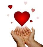 Eu dou-lhe meu coração Imagem de Stock