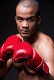 Eu estou pronto para lutar! Imagens de Stock Royalty Free