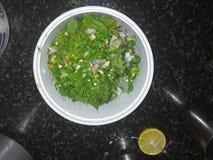 eu fiz uma salada do coentro imagens de stock royalty free