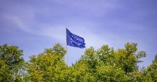 EU-Flagge auf Pfosten Wellenartig bewegende Flagge der Europäischer Gemeinschaft über Bäumen Hintergrund des blauen Himmels lizenzfreies stockbild