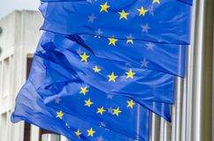 EU flags Stock Photography