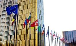 EU-medlemflaggor Arkivfoto