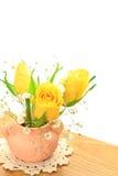 Rosa do amarelo e grama do embaçamento Foto de Stock