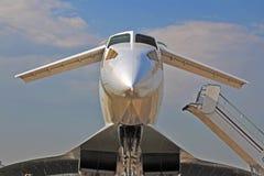 Eu quero voar! Imagens de Stock