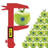 EU Standards on fruits Royalty Free Stock Image
