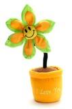 Eu te amo flor imagem de stock royalty free