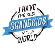 Eu tenho os melhores Grandkids no emblema do mundo Imagens de Stock