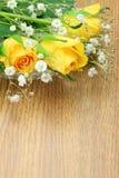 Rosa do amarelo e grama do embaçamento Imagens de Stock