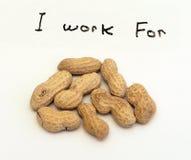 Eu trabalho para amendoins Fotografia de Stock Royalty Free