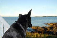 Eu ver o mar! imagem de stock royalty free