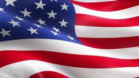 EUA americanos que acenam a bandeira