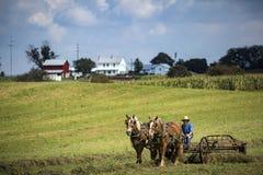 EUA - Ohio - Amish fotografia de stock