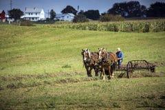 EUA - Ohio - Amish fotografia de stock royalty free