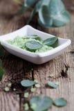 Eucalyptus bath salt Royalty Free Stock Image