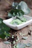 Eucalyptus bath salt Royalty Free Stock Images