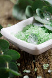 Eucalyptus bath salt Stock Images