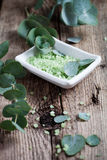 Eucalyptus bath salt Royalty Free Stock Photo