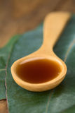 Eucalyptus Cough Syrup Royalty Free Stock Image