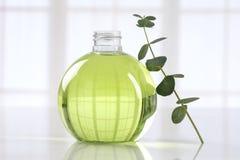Eucalyptus essential oil stock photography