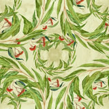 Eucalyptus - flowers and leaves, medicinal, perfumery and cosmetic plants. Watercolor. Seamless pattern. Stock Photography