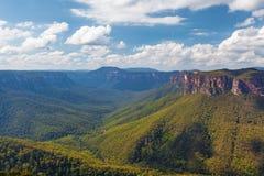 Eucalyptus forest valley, Blue Mountains, Australia. Royalty Free Stock Images