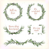 Eucalyptus Leaves circle round Green leaf Wreath berry branch be. Autiful lovely evergreen winter garaland various set, elegant watercolor Vector element royalty free illustration