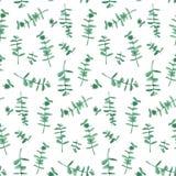 Eucalyptus naadloos patroon Royalty-vrije Stock Fotografie