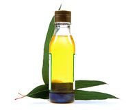 Eucalyptus oil bottle Royalty Free Stock Photo