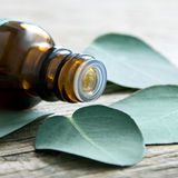 Eucalyptus oil and eucalyptus leaves Royalty Free Stock Image