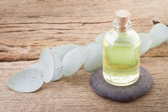 Eucalyptus oil and leaves. On wooden table Stock Photography