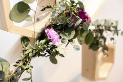 Eucalyptus and pink flowers Royalty Free Stock Images