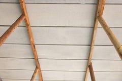 Eucalyptus prop. Bracing eucalyptus under beams  and concrete slabs Royalty Free Stock Image